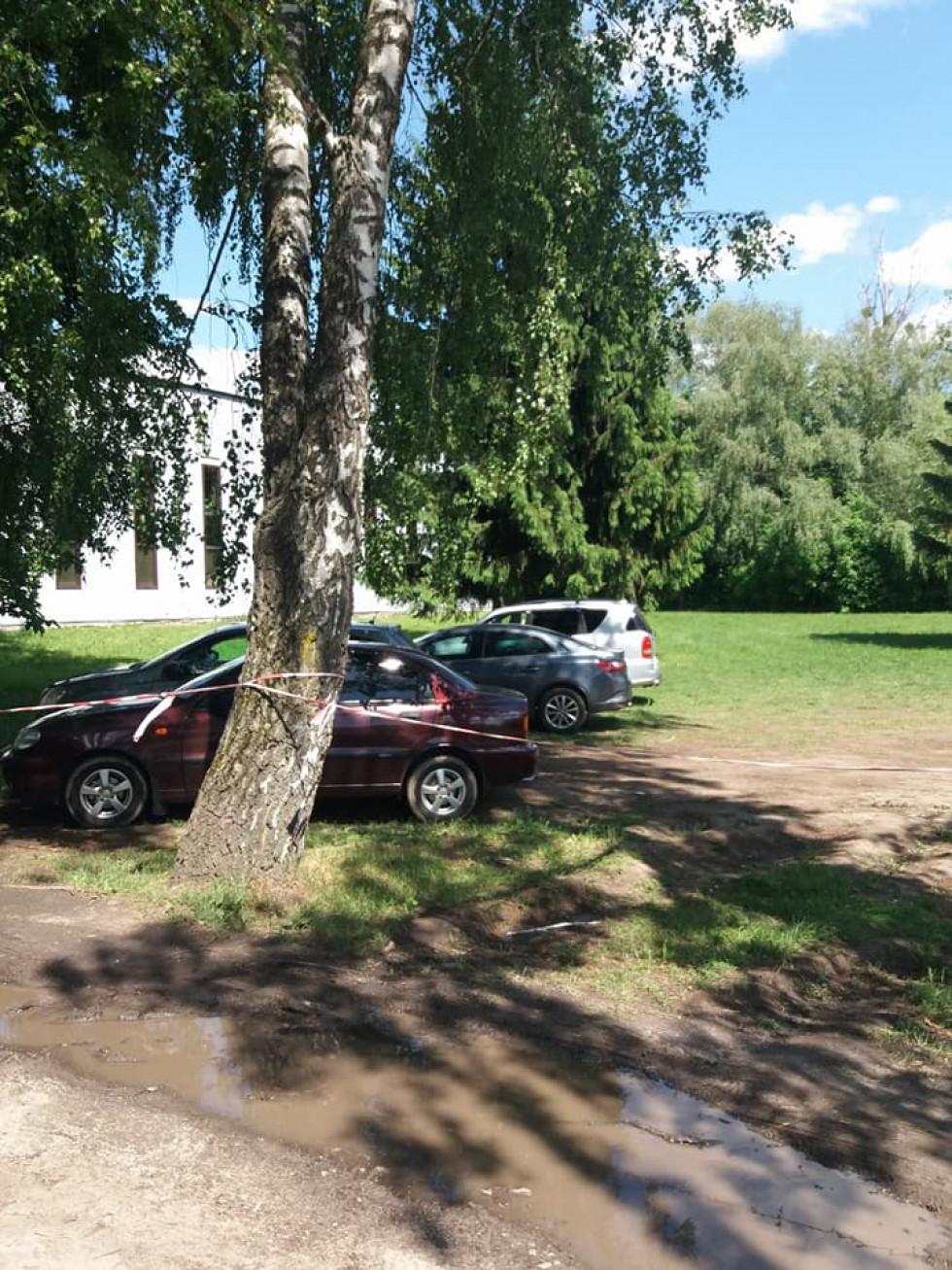 Машини у зеленій зоні