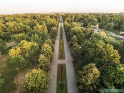 Центральна алея парку імені Лесі Українки у Луцьку