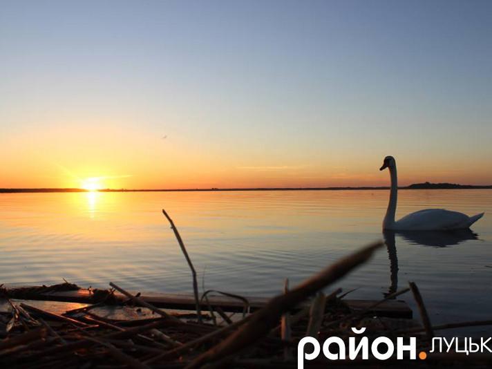 Захід сонця над озером Світязь
