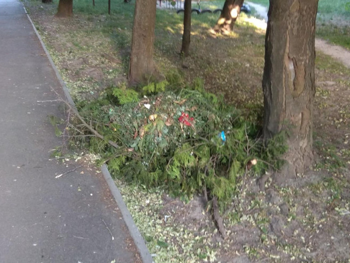 Нелегальне сміттєзвалище на Коперника