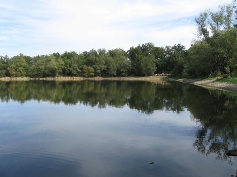 Повернули ділянку зі ставком