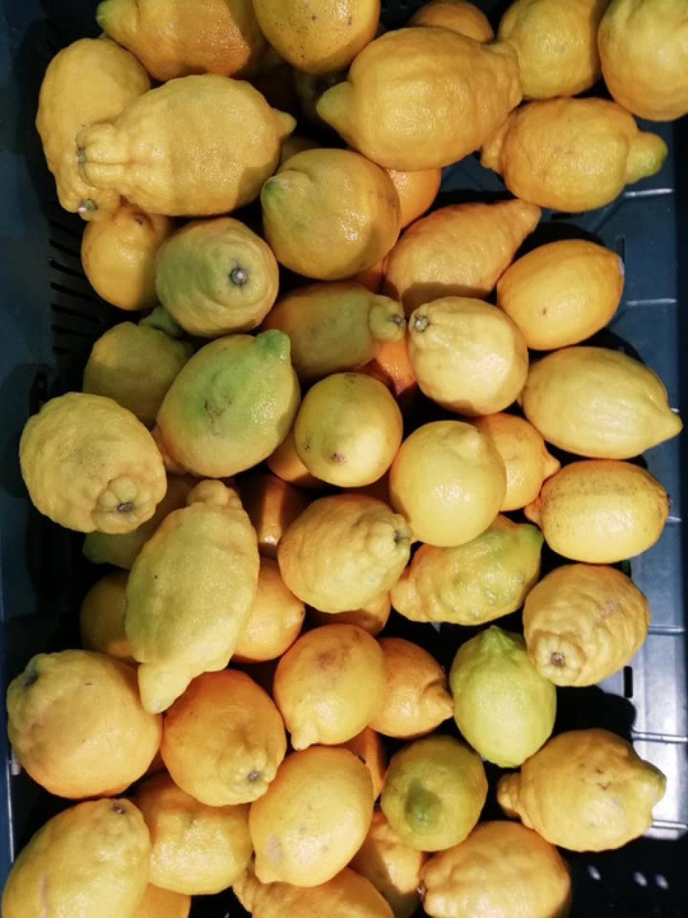 Зіпсовані лимони