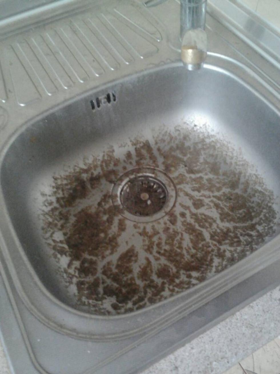 Бруд у мийці