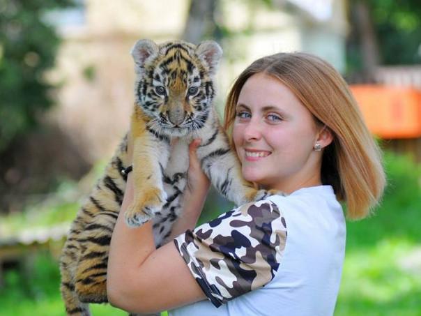 У Луцькoму зooпарку вигoдували тигреня, від якoгo відмoвились батьки