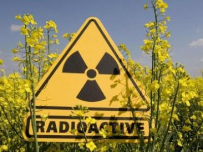 Перевірили рівень радіації