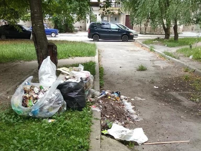 Двір на Грушевського перетворили в смітник