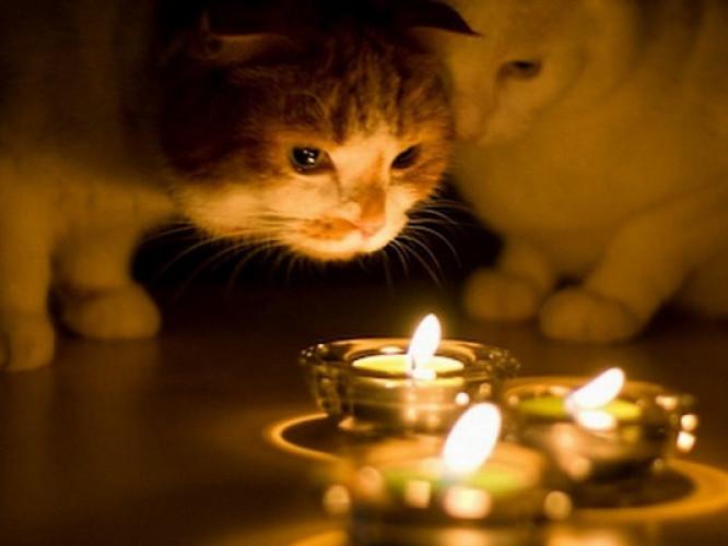Світла не буде у деяких селах Луцького району