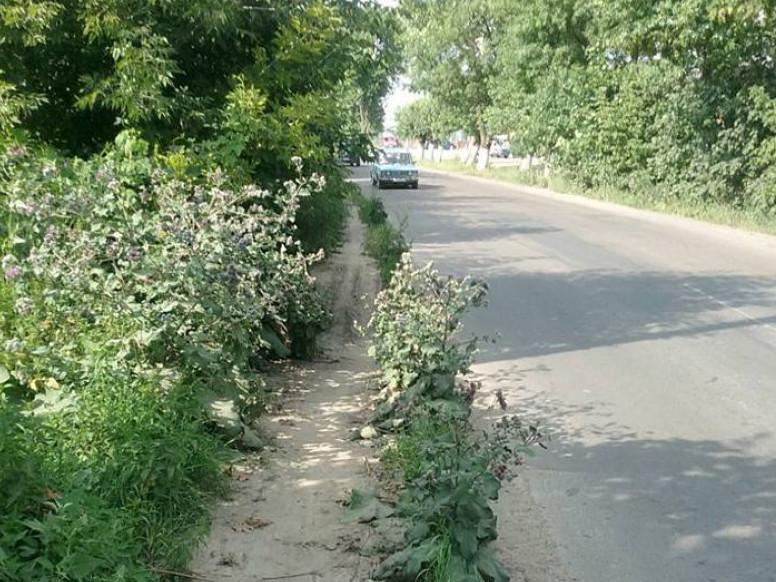 «Тротуар, по якому не пройти