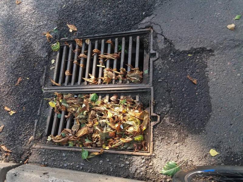 Забиті каналізаційні решітки