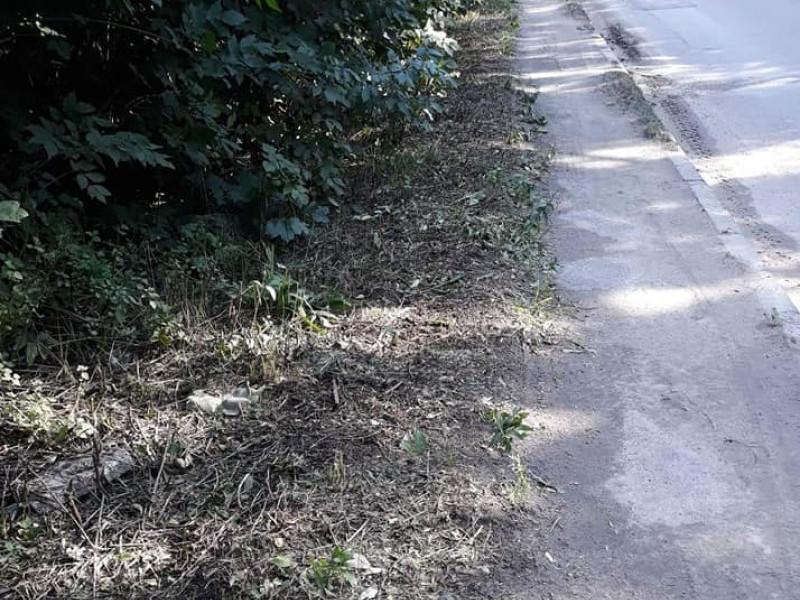 ЖЕК почистив пішохідні доріжки на своїй території