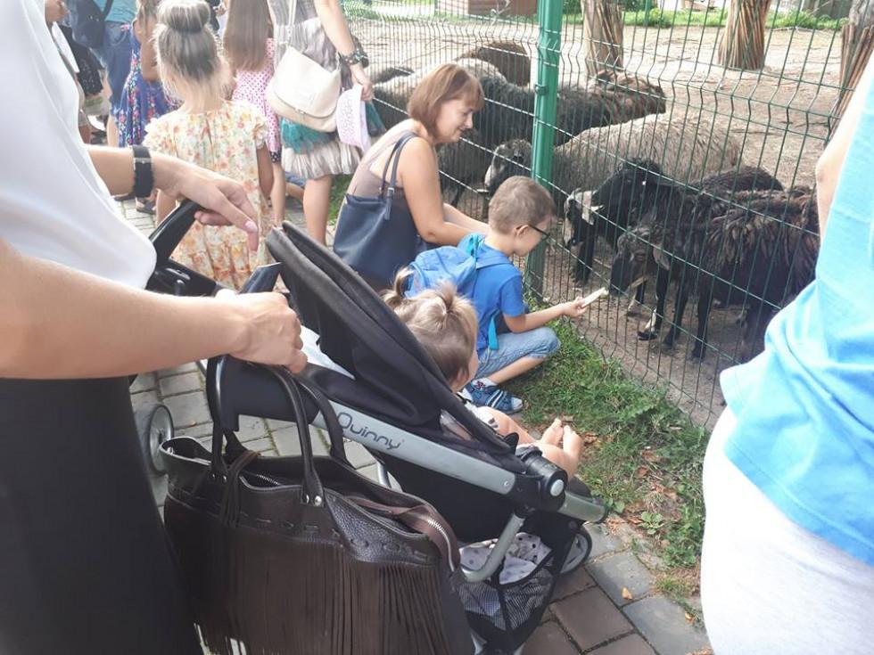 Свіжозбираними овочами почастували мешканців зоопарку