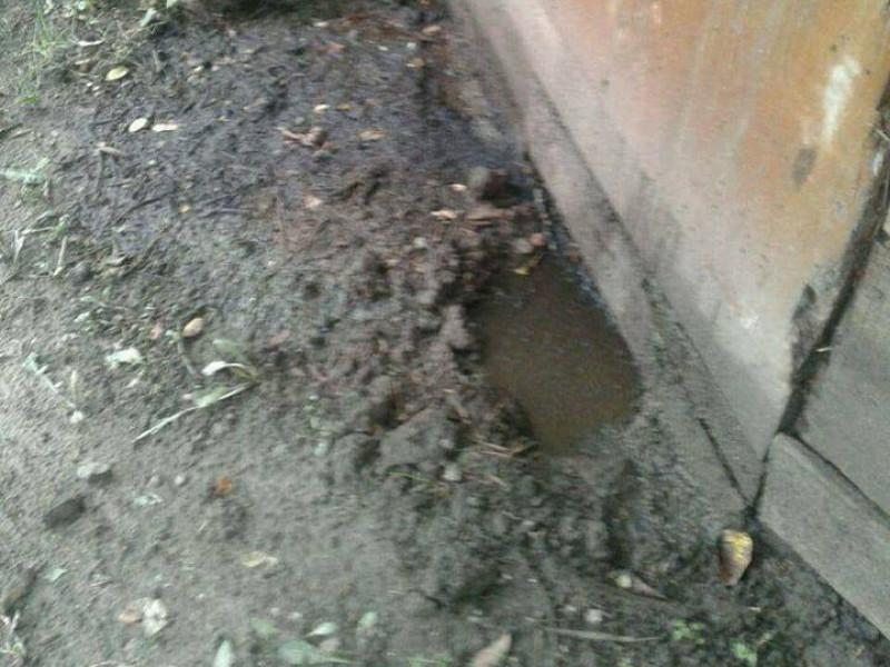 Нечистоти впадали у річку Сапалаївку