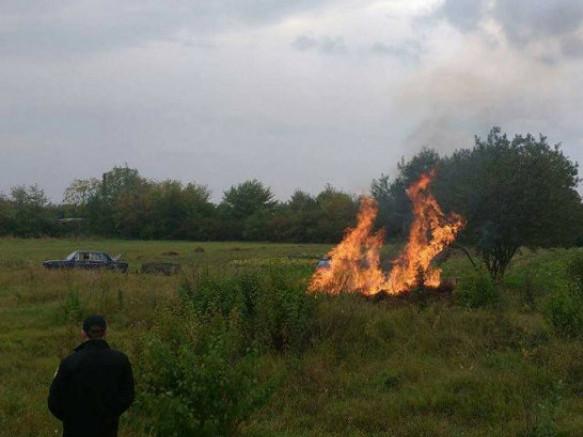 Штраф за спалювання трави, сухого листя та бадилиння може сягати від 340 до 810 гривень