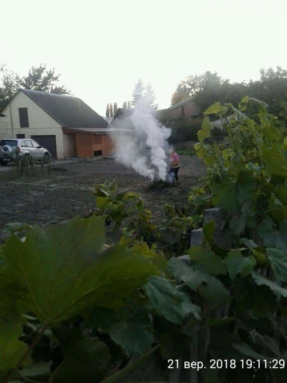 На вулиці Мисливській, 10 палили сухостій