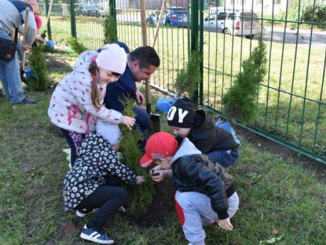 Діти висаджують дерево