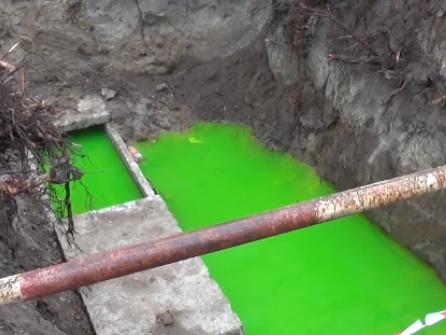 зелена вода налякала лучан