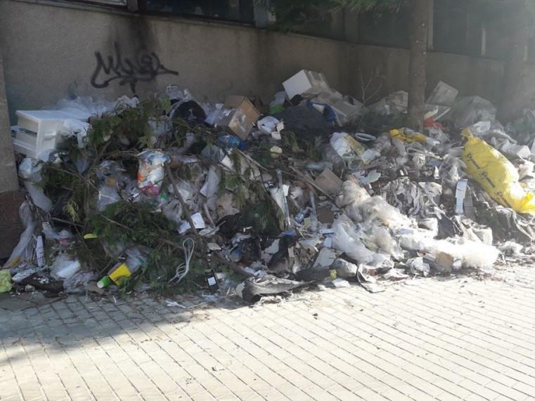 На Писаревського утворилося сміттєзвалище