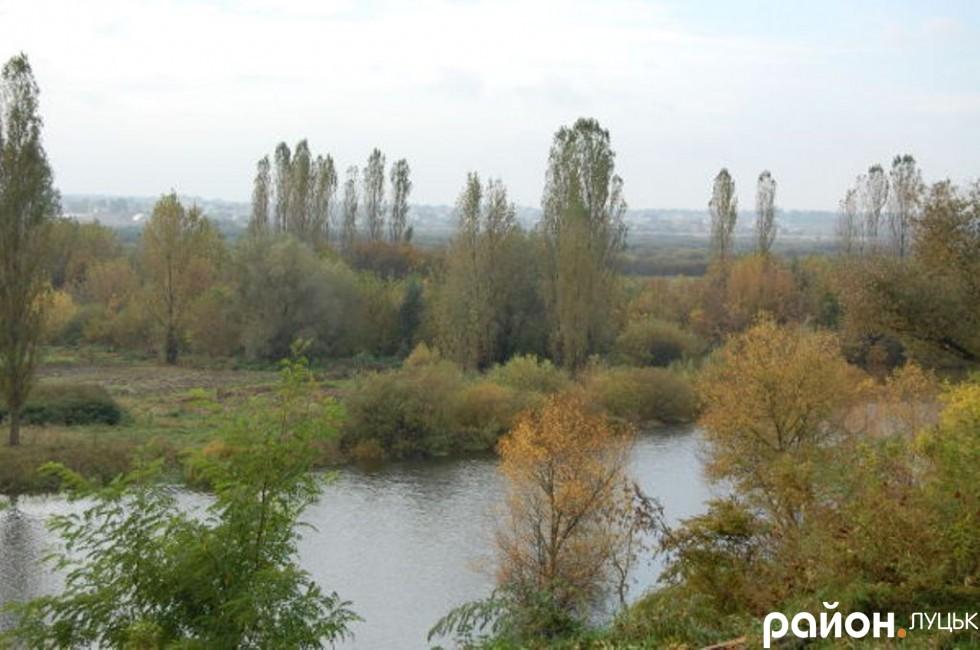 Мешканці кажуть, що на території старого гирла Стриру всі земельні ділянки - приватизовані