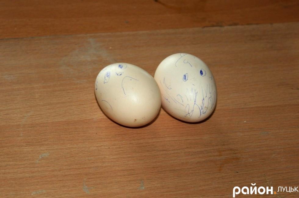 Сумне і веселе яйце чекають, коли їх використають для експерименту