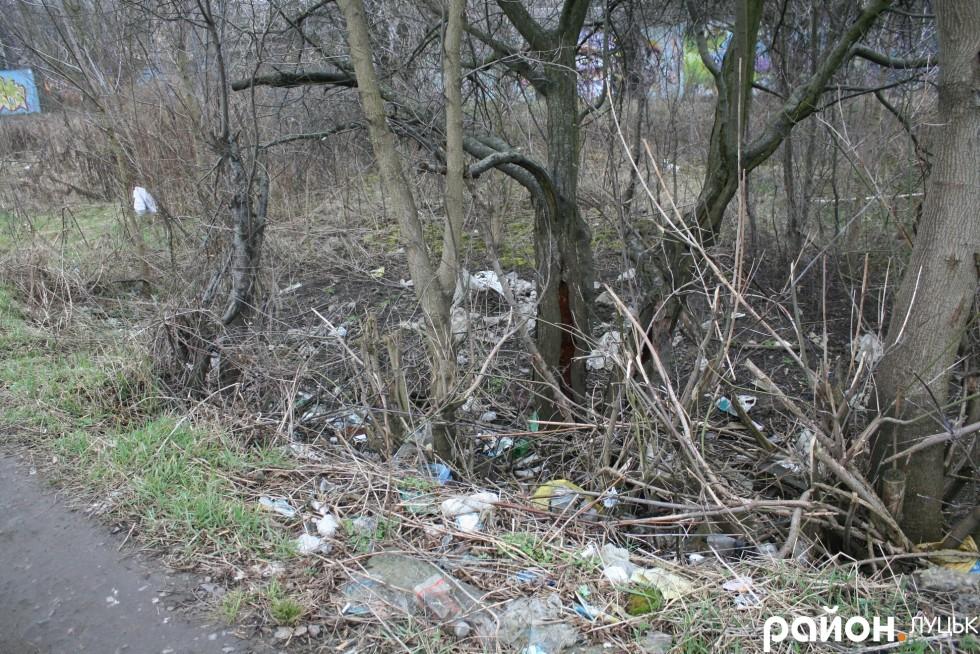 Дорога до залізниці потопає у смітті