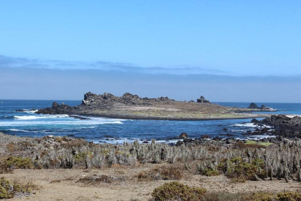 Острів у Тихому океані, де живуть пінгвіни