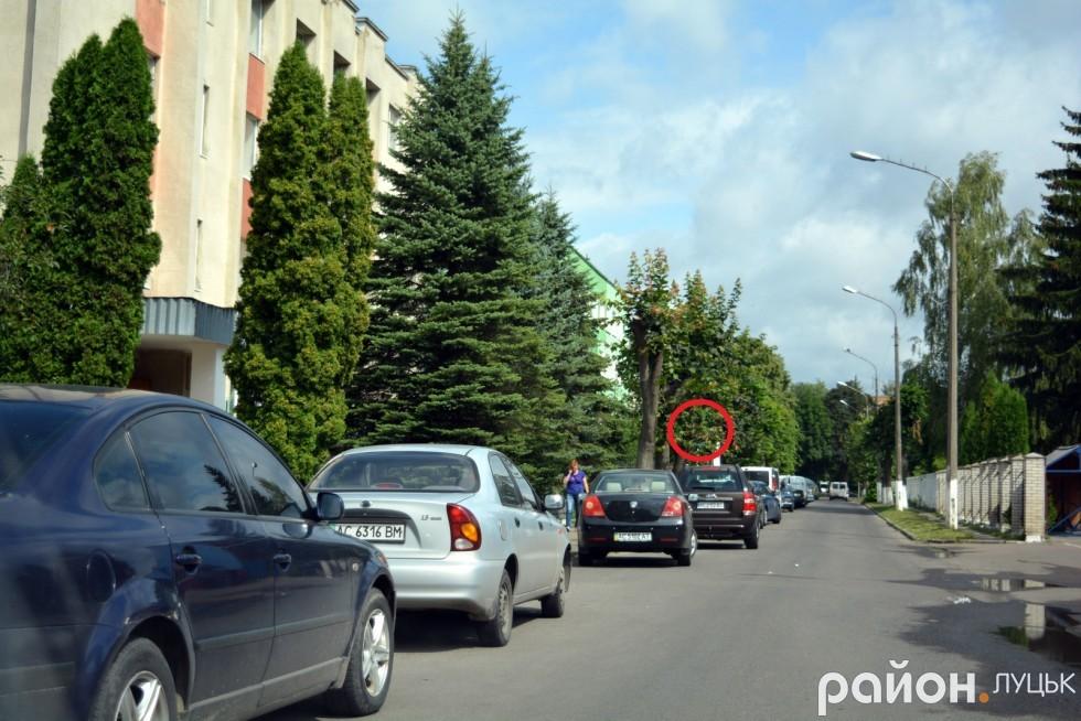 Важко повірити, що там є дорожній знак