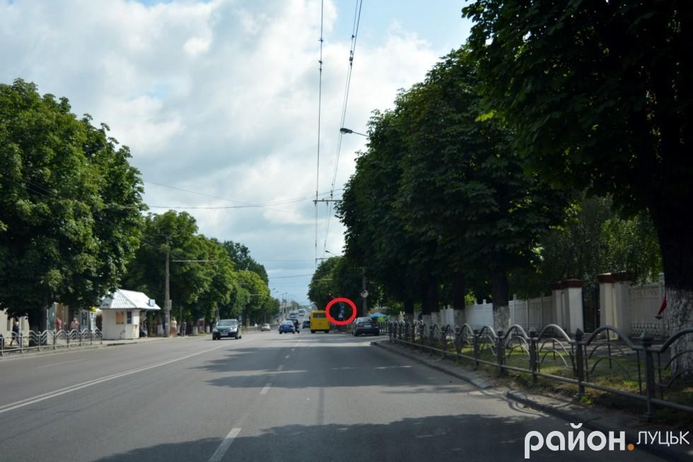 Дорожні знаки на проспекті Перемоги також сховалися від водіїв у кронах каштанів