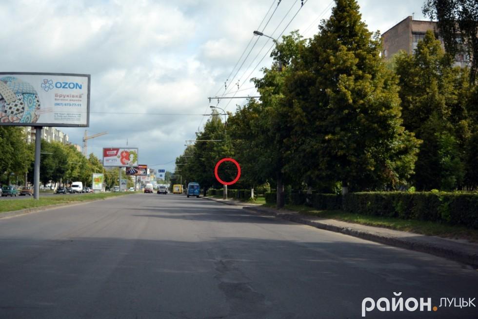 А ось тут є знак, який мав би інформувати водія, що в цьому місці зупинка громадського транспорту. Тому не дивуйтесь, якщо у цій частині проспекту перед вами раптово зупиниться автобус