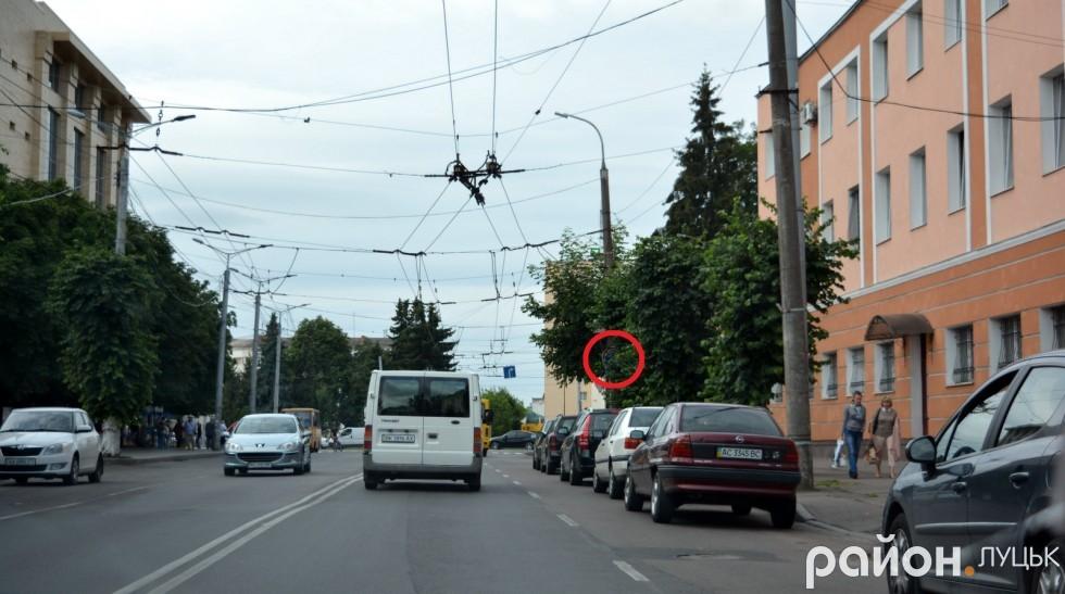 Тепер зрозуміло, чому біля Головного управління Національної поліції у Волинській області паркуються, незважаючи на дорожній знак заборони