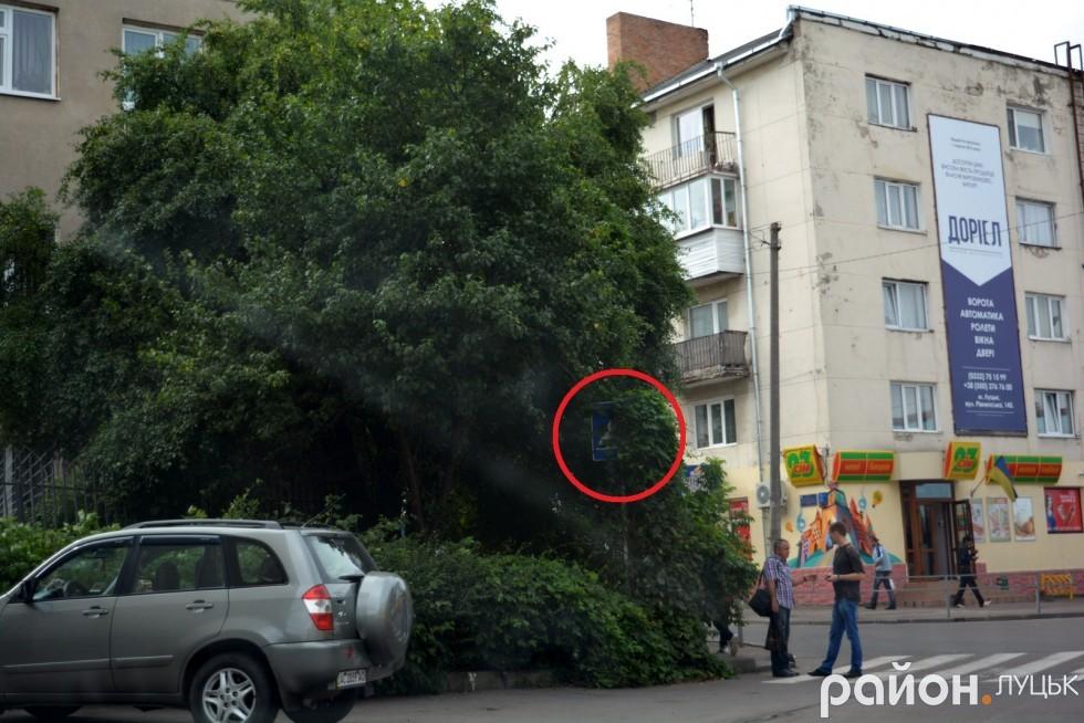 Щось подібне, заросле, можна побачити у зоні відчуження у Чорнобилі. То пусте, що ми дивимося на одну із центральних вулиць міста Луцька