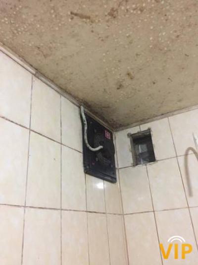 На межі: душ у компанії «грибів»