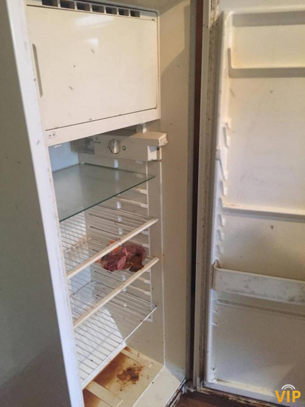 А у цьому холодильнику повісилась не лише миша, а й мошка