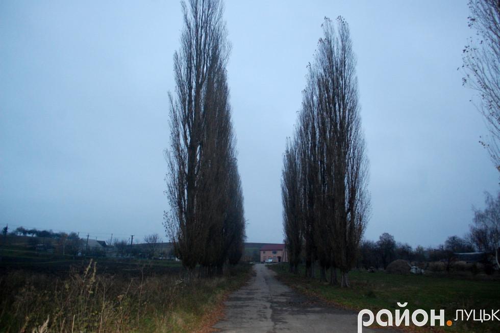 Дорога, яка веде до колишньої ферми