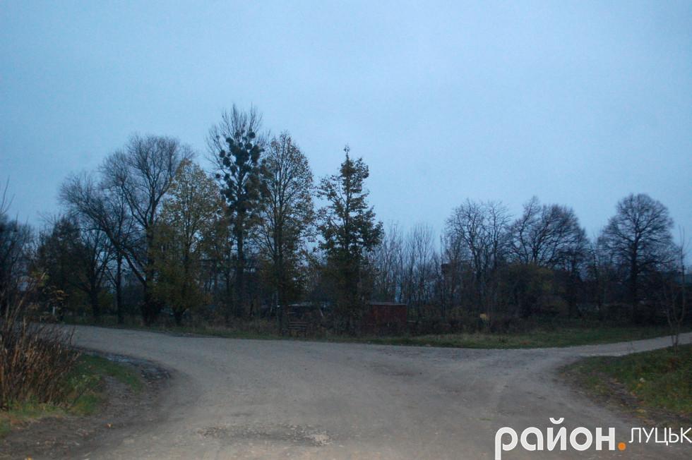 Дорога у селі
