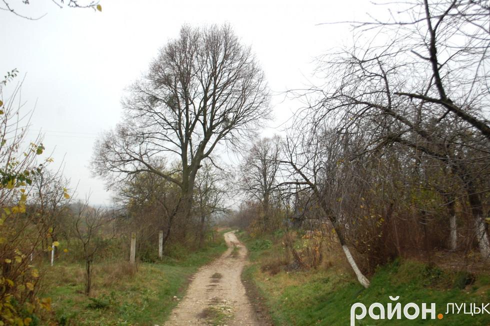 Одна з доріг села Цеперів