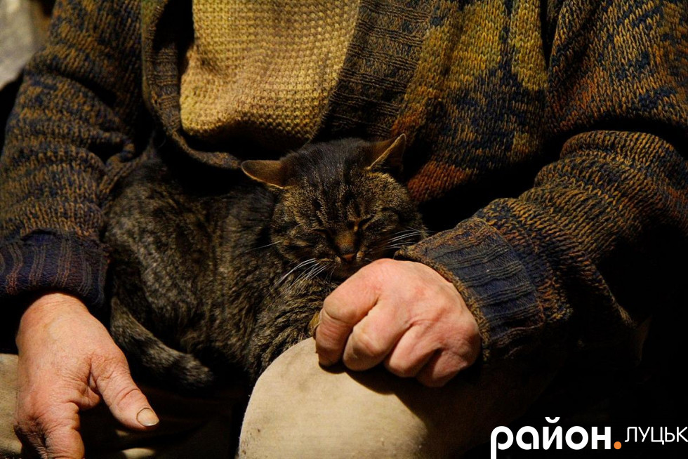 Микола Головань із котом