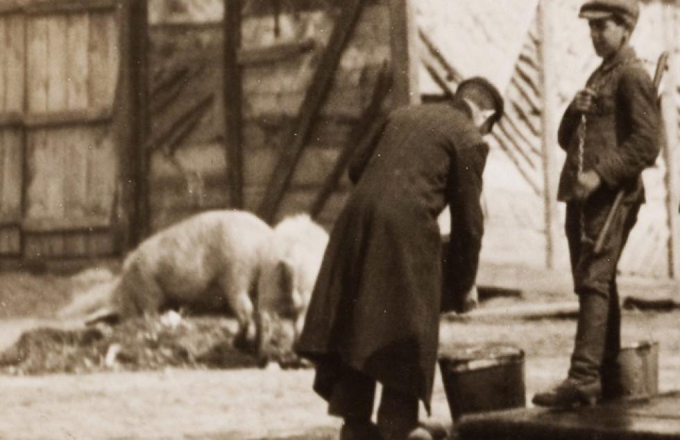 Луцьк, 1926