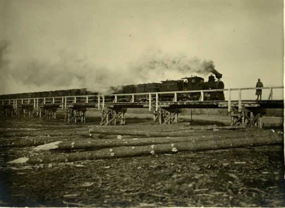 Дерев'яні мости витримували й потяги