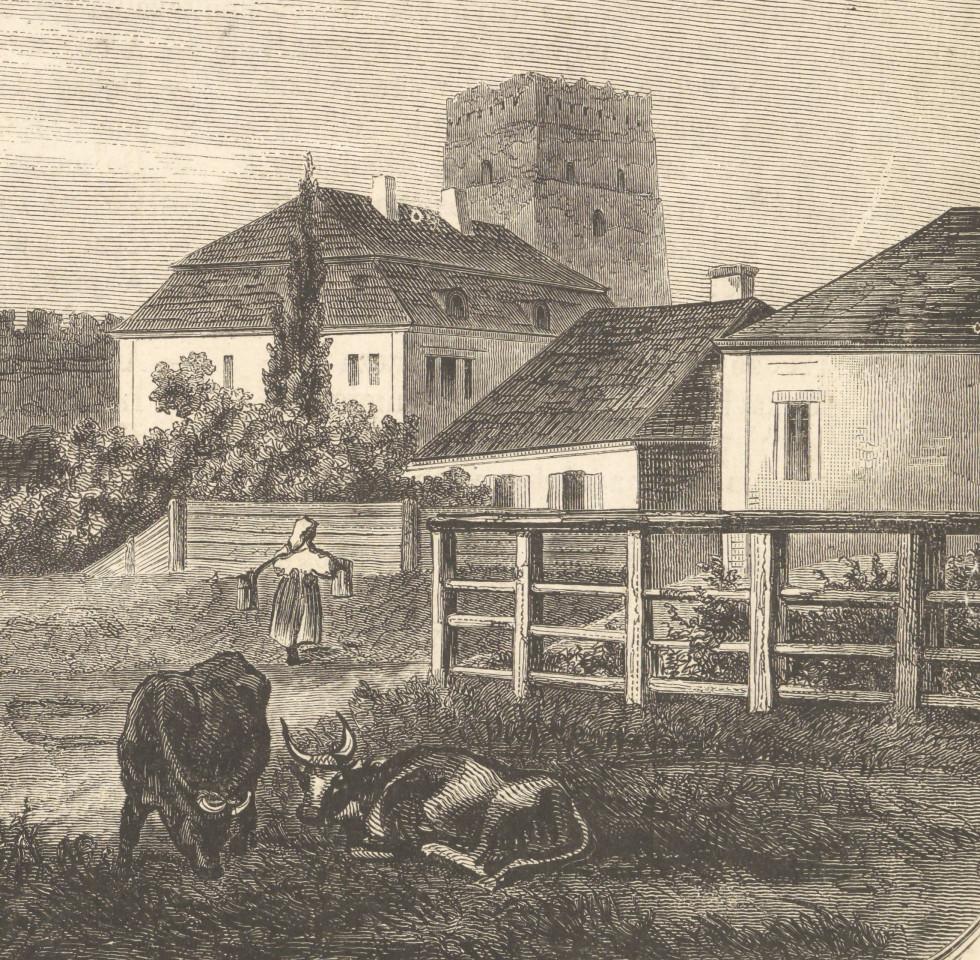 Фрагмент гравюри «Західна вежа замку в Луцьку», до 1900 року.