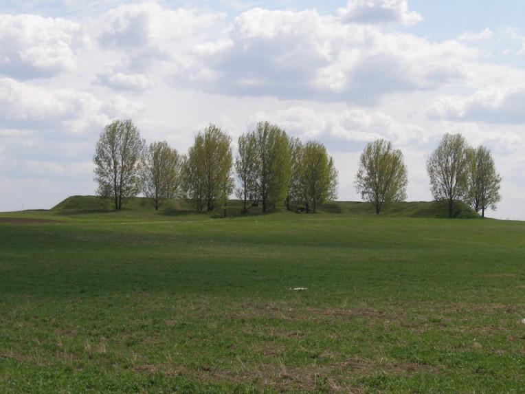 Боратинський форт