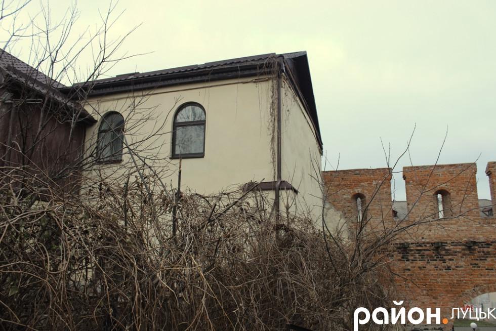 Будинок Пузини у дивній рослинності